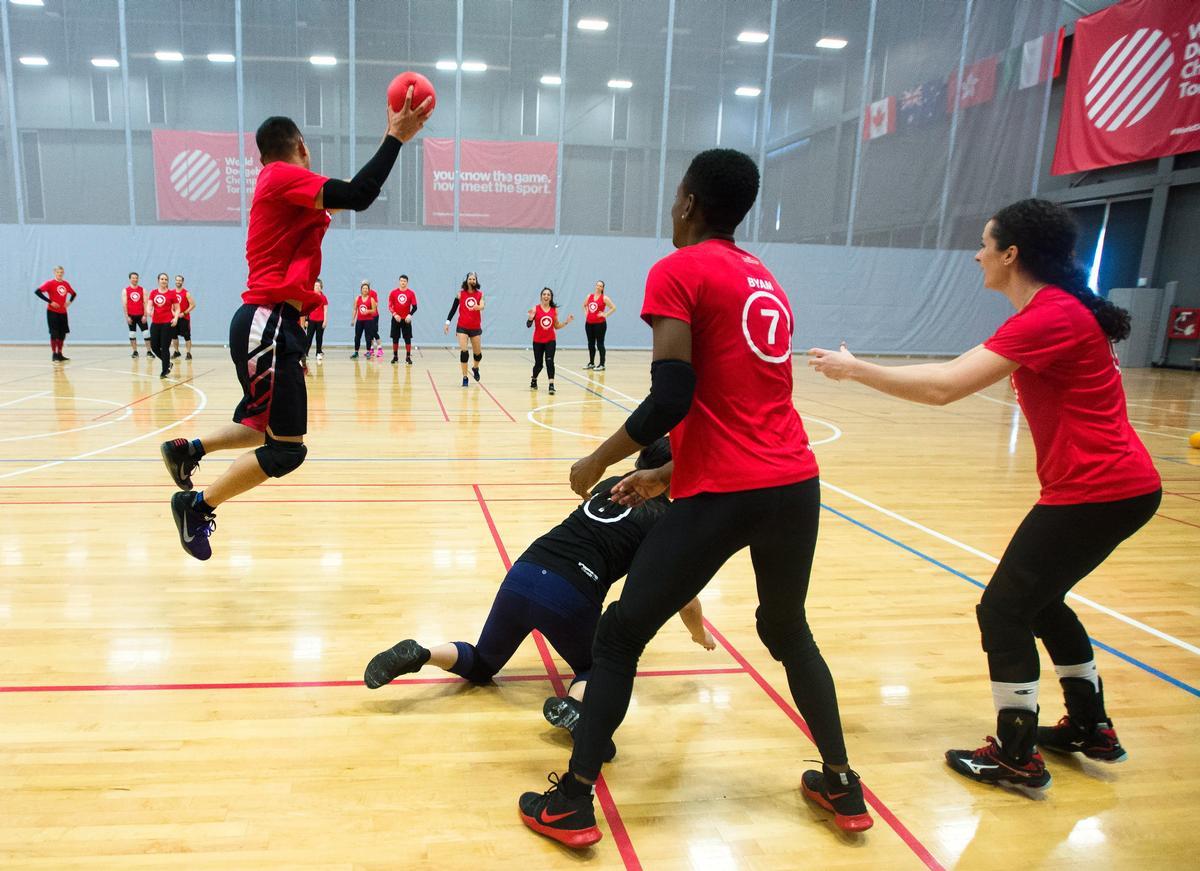 fun & sport activité dodgeball